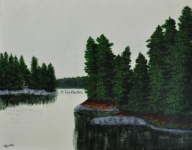 Otty Lake Shoreline - by Les Bartley