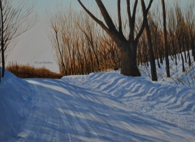 Winter Road - McGregor Lake - by Les Bartley
