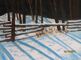FENCE LINE IN SNOW